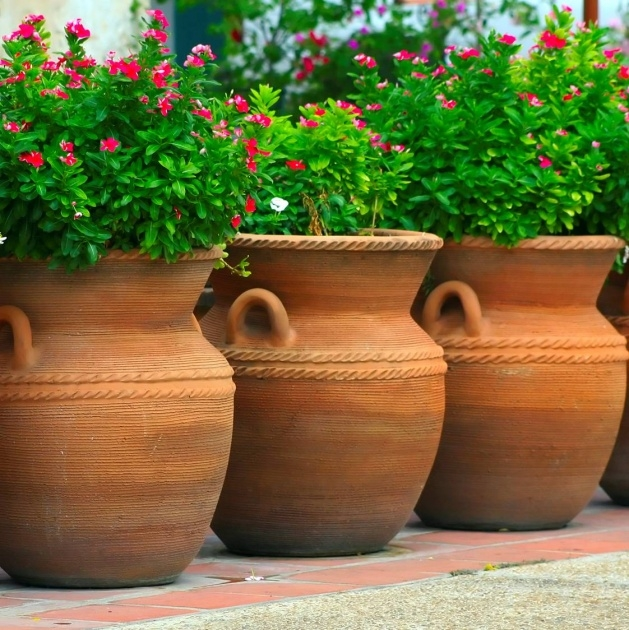 Cool Large Terracotta Planter Image