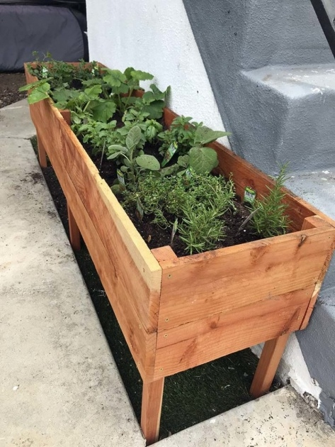 Cool Raised Planter Boxes Picture