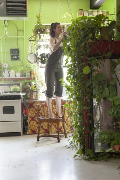 Cool Summer Rayne Oakes Houseplants Picture