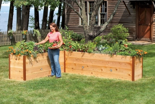 Cool Vegetable Planter Box Photo