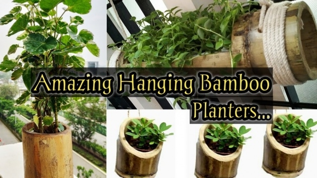 Creative Bamboo Planter Ideas Picture