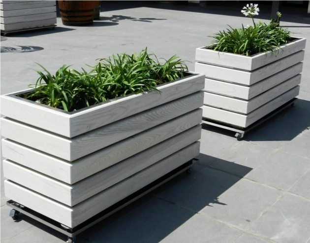 Creative Contemporary Planter Box Picture