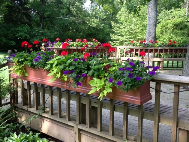 Creative Deck Railing Planter Boxes Picture