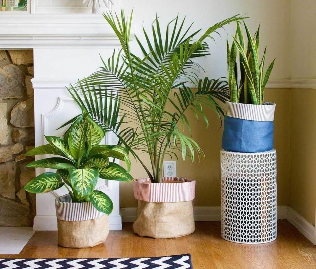 Creative Diy Plant Pots Picture