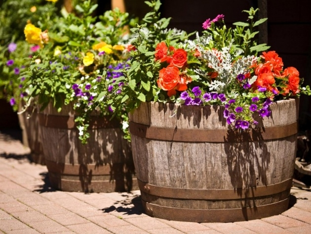 Creative Flower Planter Ideas Picture