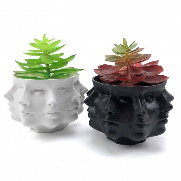 Creative Head Plant Pot Image