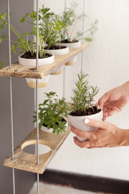 Creative Herb Planter Ideas Photo