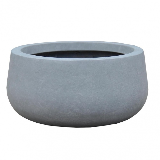Creative Large Bowl Planter Image