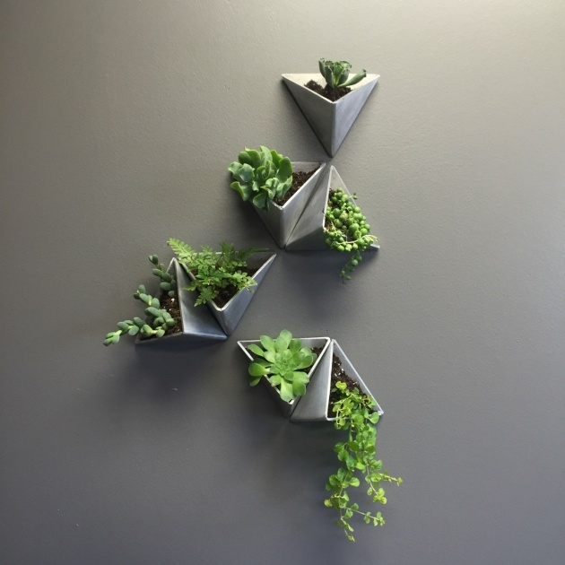 Creative Modern Wall Planter Image