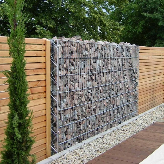 Creative Plant Fence Ideas Photo