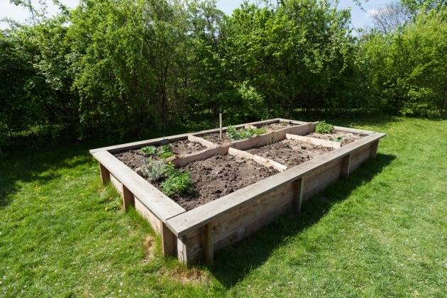 Creative Raised Garden Plans Photo