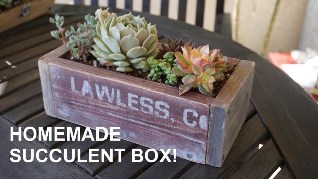 Creative Succulent Planter Box Photo