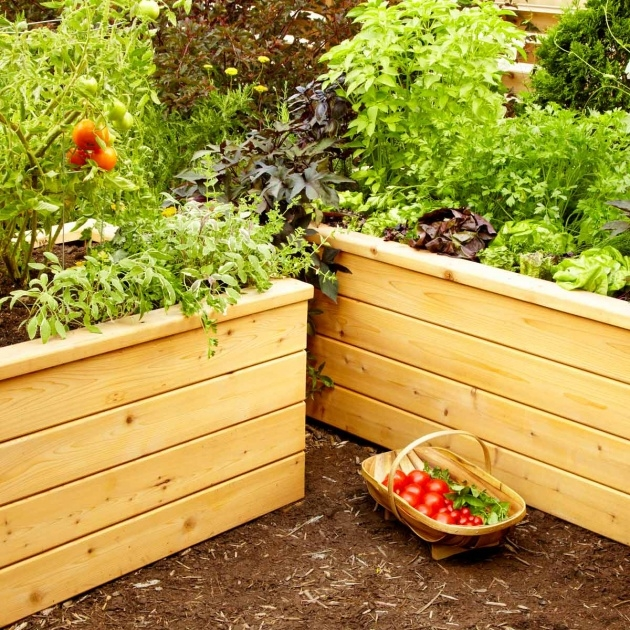 Creative Vegetable Garden Planter Box Picture