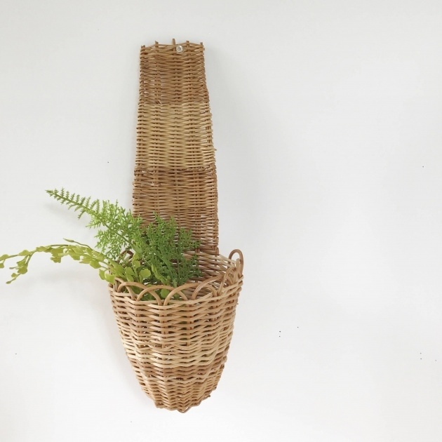 Creative Wall Baskets For Plants Photo