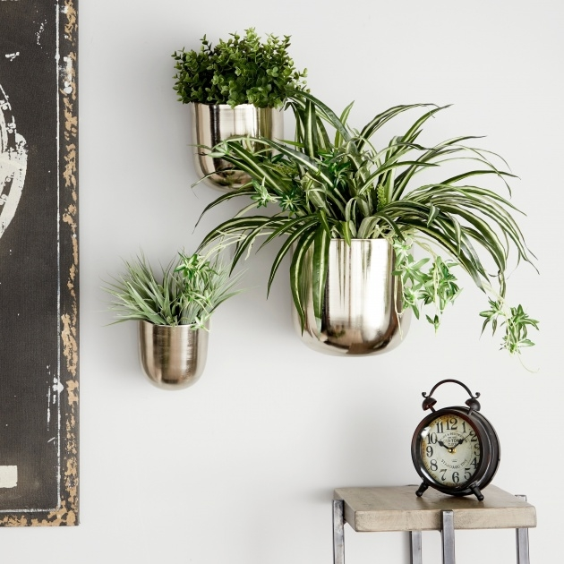 Creative Wall Planters Indoor Image