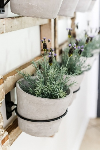 Easy Artificial Wall Planters Photo