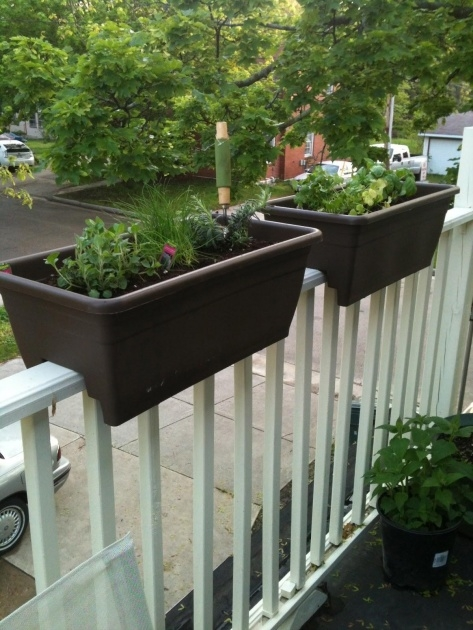 Easy Balcony Planters Photo
