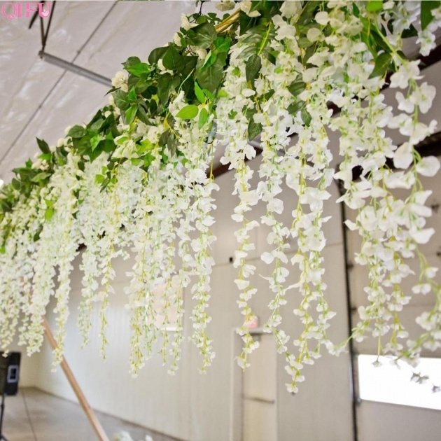 Easy Cheap Hanging Plants Image