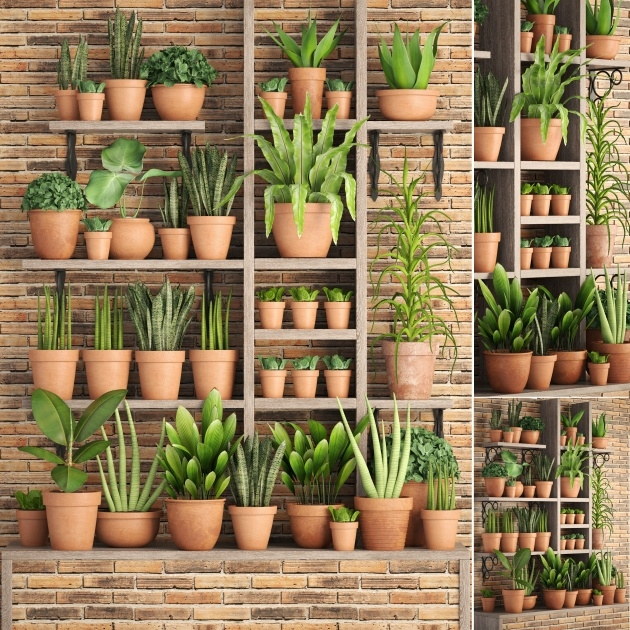 Easy Clay Pots For Plants Image