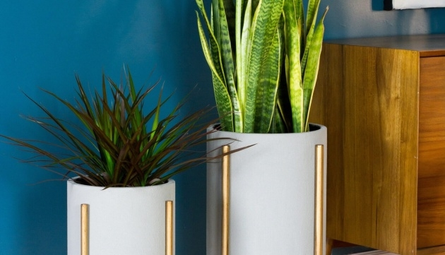Easy Contemporary Indoor Planters Picture