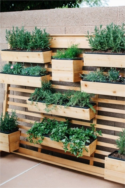 Easy Creative Planter Box Ideas Image
