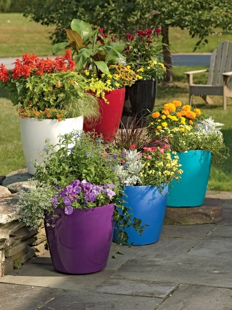 Easy Garden Plant Pots Photo