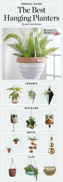 Easy Hanging Plant Pots Picture