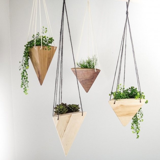 Easy Modern Hanging Planter Photo