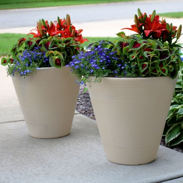 Easy Outdoor Plant Pots Photo
