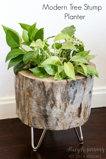 Easy Tree Stump Planter Photo