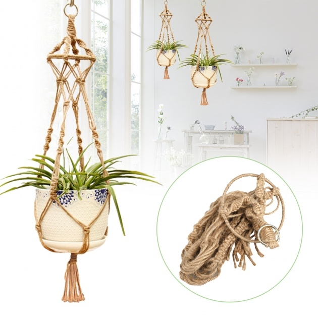 Easy Wall Hanging Planters Image