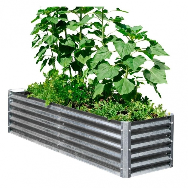 Fantastic Galvanized Steel Planter Boxes Picture