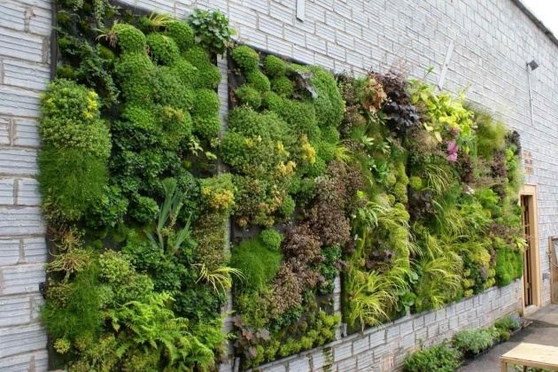 Fantastic How To Make A Plant Wall Image