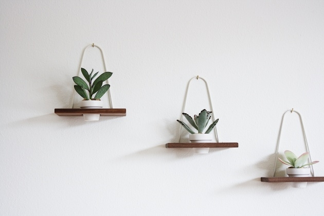 Fantastic Modern Wall Planter Photo