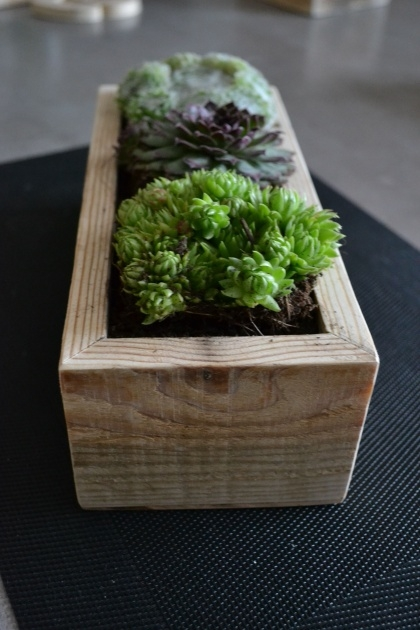 Fantastic Small Wooden Planters Image