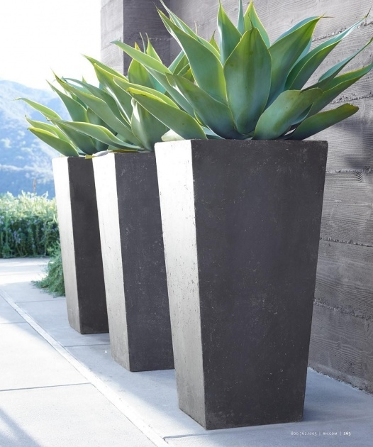 Fascinating Contemporary Outdoor Planters Photo