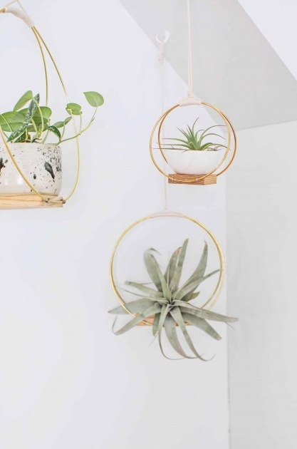Fascinating Diy Hanging Planter Image