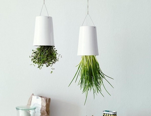 Fascinating Diy Upside Down Planter Image