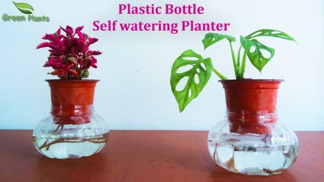 Fascinating How To Make A Self Watering Planter Image