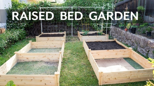 Fascinating Raised Bed Planter Picture
