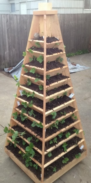 Fascinating Strawberry Tower Planter Picture