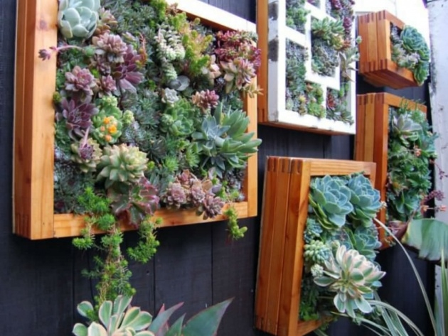 Fascinating Vertical Succulent Planter Image