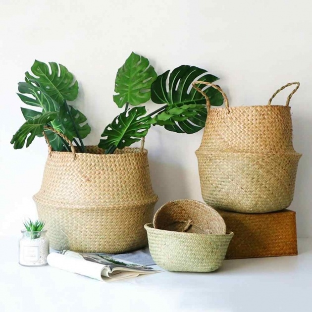Fascinating Woven Plant Basket Image