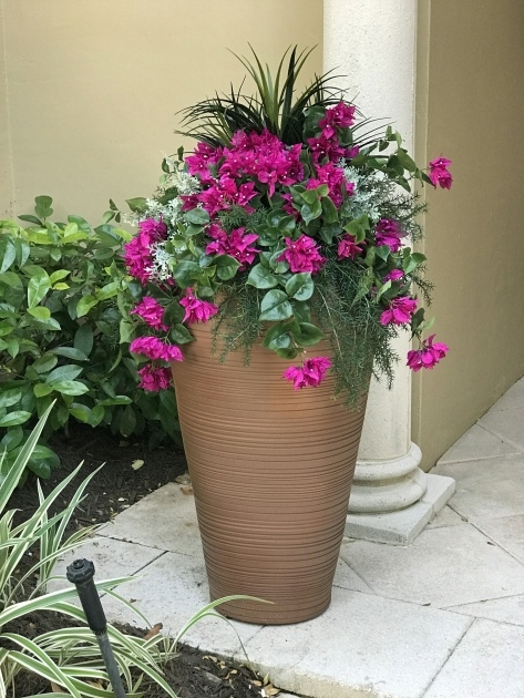 Gallery Of Artificial Outdoor Plants Photo