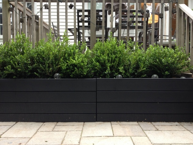 Gallery Of Black Planter Box Image