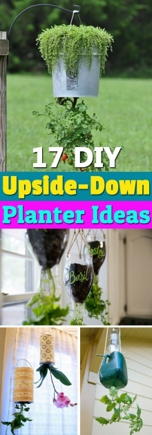 Gallery Of Diy Upside Down Planter Image