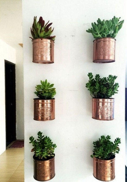 Gallery Of Hanging Wall Planters Indoor Picture