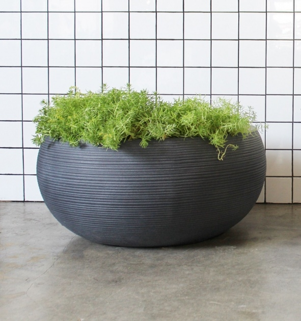 Gallery Of Large Bowl Planter Picture