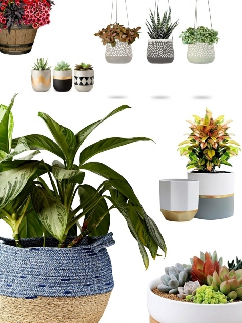 Gallery Of Pots And Planters Image
