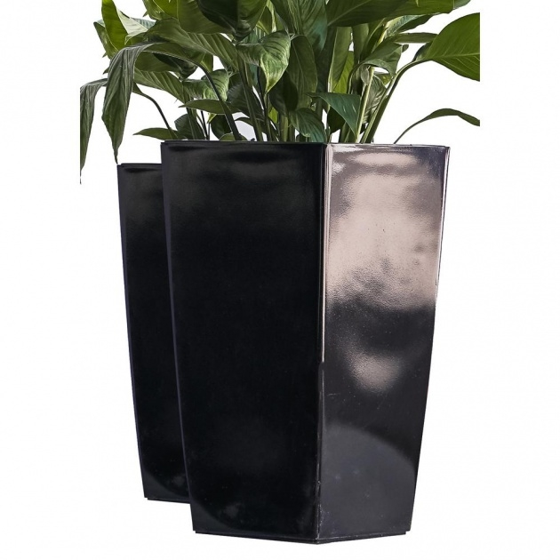 Gallery Of Tall Black Planter Photo